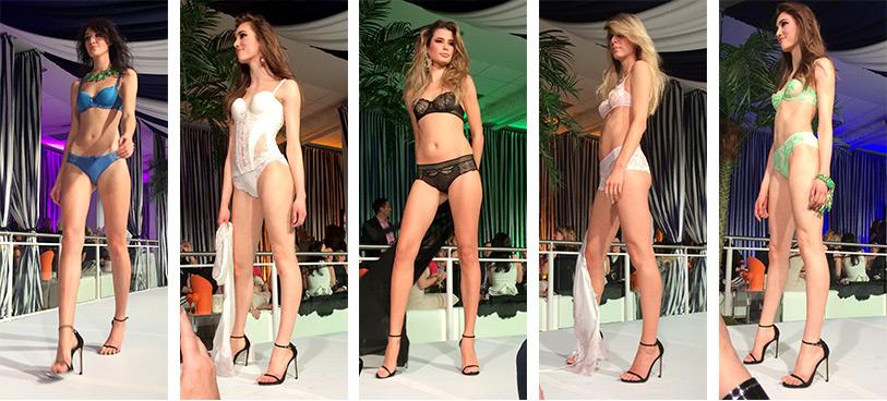 brian-jessel-bmw-cabriolet-gala-2017-fashion-show-blog-02-simone-perele-dianes-lingerie-vancouver-813x368