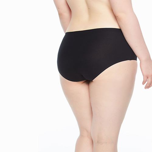 Chantelle - Soft Stretch One Size Hipster Brief Plus Size - Dianes Lingerie