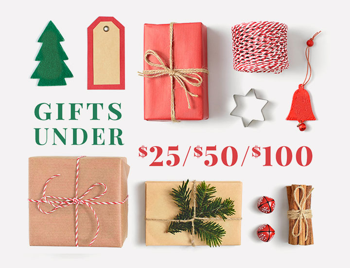 2020-holiday-gift-guide-hp-banner-dianes-lingerie-vancouver-720x550-1