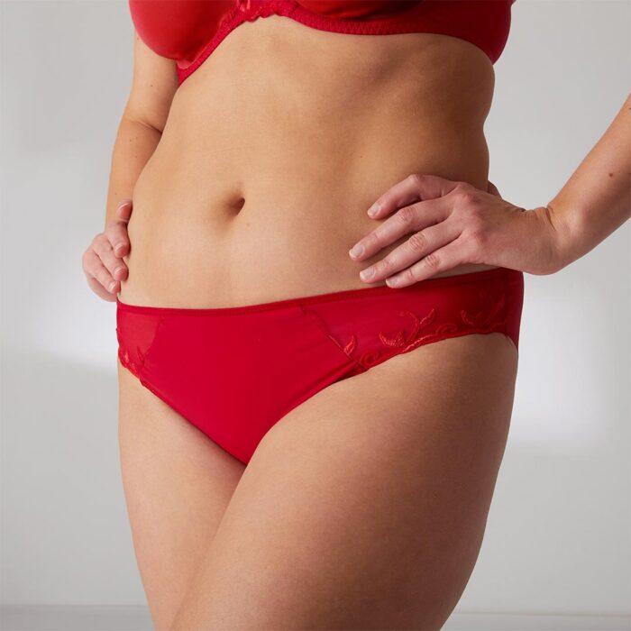 simone-perele-andora-bikini-brief-ruby-727-ob-01-dianes-lingerie-vancouver-1080x1080